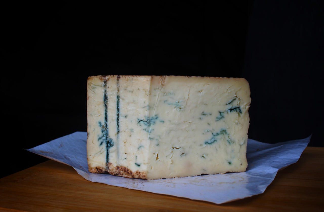Can Dogs Eat Blue Cheese?