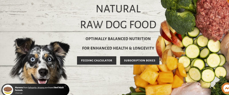 Cali Raw Dog Food Review